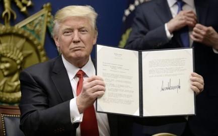 国連の専門機関が米の入国禁止を強く非難 - ảnh 1
