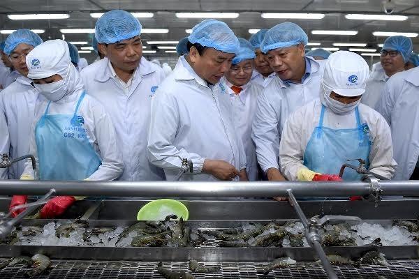 フック首相、カマウ省のミンフー水産物グループを訪問 - ảnh 1