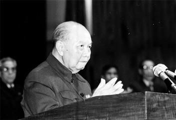 故チュオン・チン党書記長生誕110周年 - ảnh 2