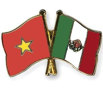 ベトナム・メキシコ、財政面での協力を強化 - ảnh 1