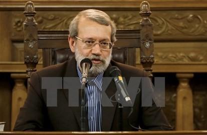 イラン国会議長、「イランはロシアとの戦略的な同盟結成に向けて行動」 - ảnh 1