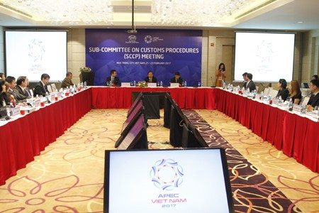 APEC 財政・保険面での自然災害対策を強化 - ảnh 1