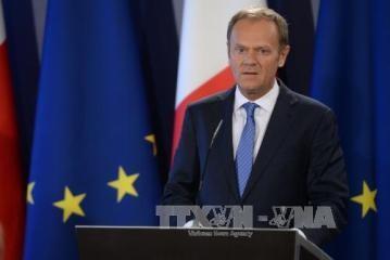 EU大統領 英国との離脱交渉方針を発表 - ảnh 1