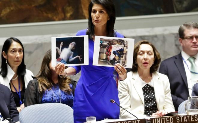 米、シリアにさらなる攻撃を警告 - ảnh 1