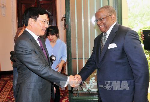 ベトナム NZ・アンゴラとの関係を強化 - ảnh 2