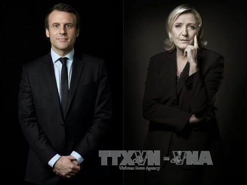 EUの将来像を決める欧州各国選挙 - ảnh 1