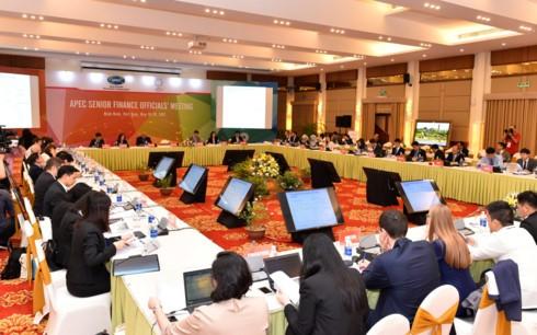 APECの財務高級実務者会合始まる - ảnh 1