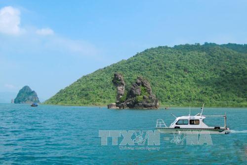 バイトゥロン国立公園、ASEANの遺産公園に認定される - ảnh 2