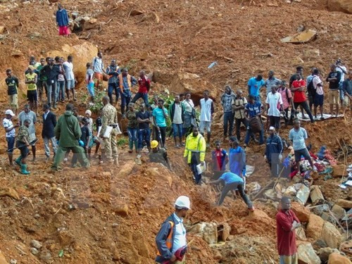 シエラレオネで地滑りと洪水 300人以上死亡か - ảnh 1