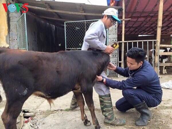 畜産農家と学生のために    - ảnh 2