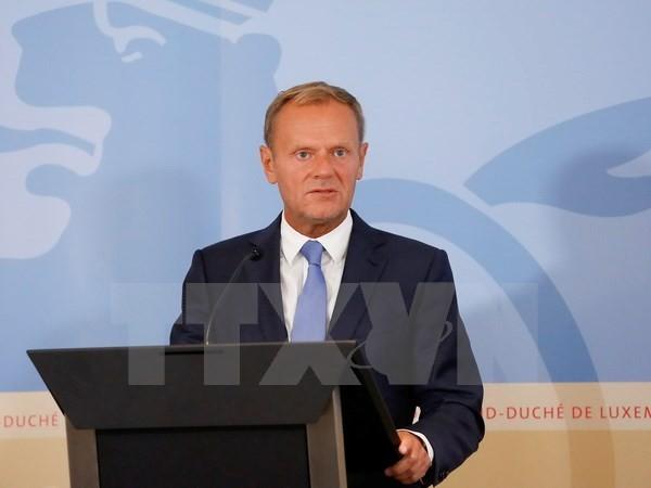 トゥスクEU大統領:英離脱交渉のペース遅い、合意なしの可能性ある - ảnh 1