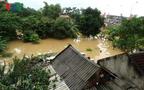 洪水被害の克服作業を進める - ảnh 1