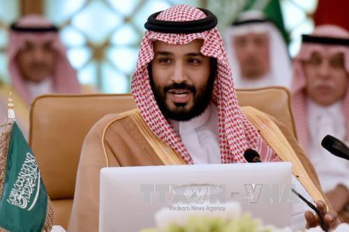 サウジアラビヤの王子や政府高官十数人が逮捕 - ảnh 1