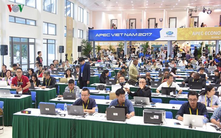 英メディア、APEC2017の主催国を評価 - ảnh 1