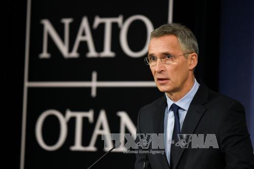 NATO 新司令部設置で合意 ロシアの脅威に対応 - ảnh 1
