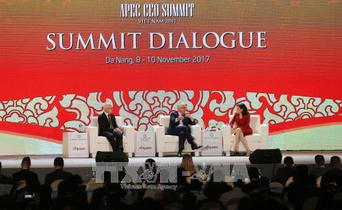 APEC CEOサミット 社会が注目する課題を討論 - ảnh 1