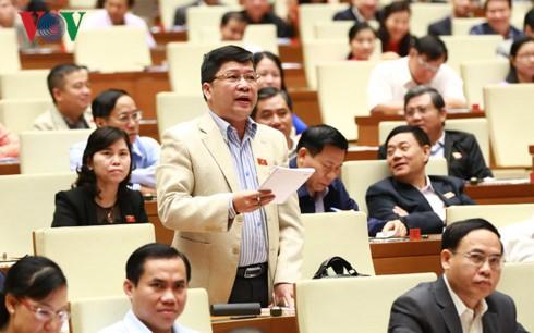 国会、林業法を採択 - ảnh 1