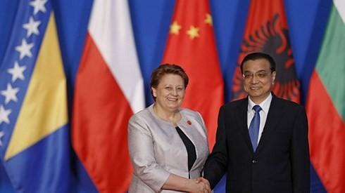 中国と東欧・中欧諸国16カ国とのサミット 開催 - ảnh 1