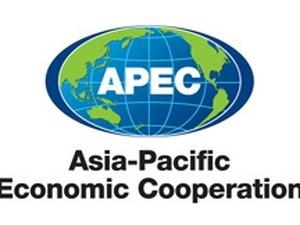 Konferensi persiapan bagi Konferensi Tingkat Tinggi APEC berakhir - ảnh 1