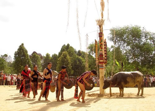 Kekhasan warna-warni etnis minoritas Co Tu di barisan gunung Truong Son - ảnh 2