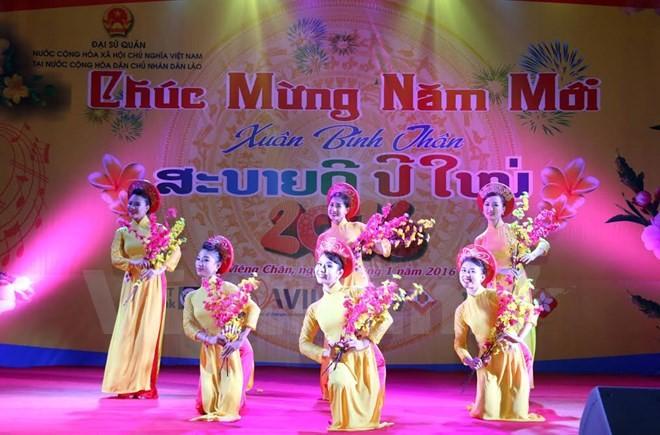 Aktivitas-aktivitas menyambut Hari Raya Tet di kalangan diaspora Vietnam di luar negeri - ảnh 1