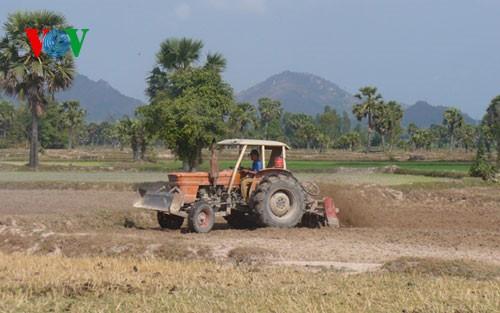 Daerah ekonomi titik berat daerah dataran rendah sungai Mekong mengembangkan ekonomi yang dikaitkan dengan usaha menghadapi perubahan iklim - ảnh 1