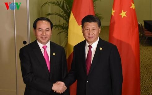 Presiden Tran Dai Quang melakukan pertemuan dengan para pemimpin APEC - ảnh 1