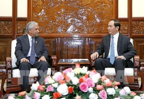 Presiden Tran Dai Quang menerima Koordinator Tetap PBB, Kepala Perwakilan UNDP di Vietnam - ảnh 1