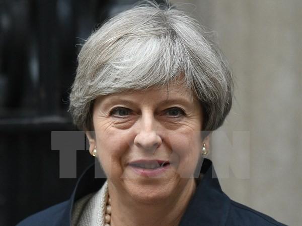 PM Inggris, Theresa May mengimbau dukungan dari partai-partai oposisi - ảnh 1