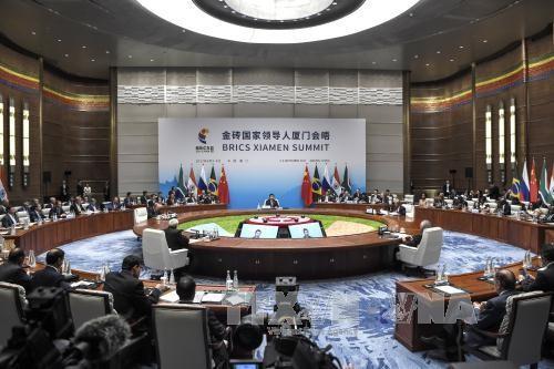 BRICS: penggalan jalan 16 tahun dan tangangan-tantangan di depan - ảnh 1