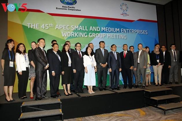 APEC 2017: bekerjasama mendorong pengembangan badan usaha kecil dan menengah - ảnh 1