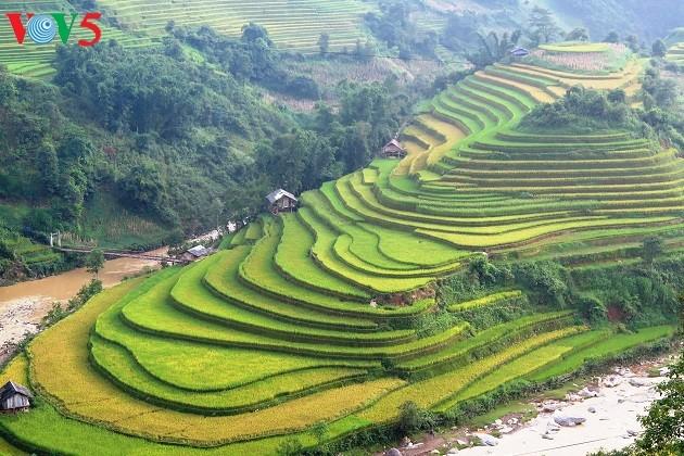 Provinsi Yen Bai: Siap untuk Pekan Kebudayaan-Wisata terasiring  Mu Cang Chai 2017 - ảnh 1
