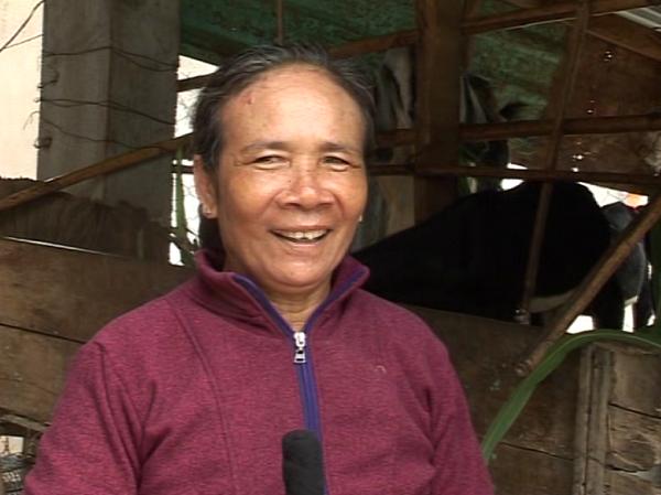Ibu Le Thi Kim Loan, wanita yang mencapai kesejahteraan dari peternakan kambing - ảnh 1