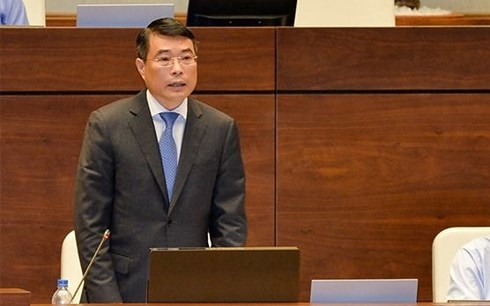 Pendapat pemilih tentang jawaban interpelasi dari Gubernur Bank Negara Le Minh Hung dan Menteri Informasi dan Komunikasi Truong Minh Tuan - ảnh 1