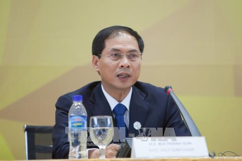 Menyampaikan hasil Pekan Tingkat Tinggi APEC 2017 kepada perwakilan asing dan berbagai organisasi internasional di Kota Hanoi - ảnh 1