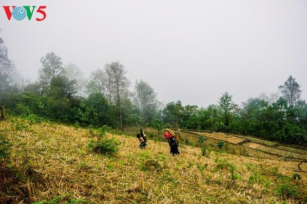 Noroeste de Vietnam entre las nubes: un paraíso terrenal - ảnh 11