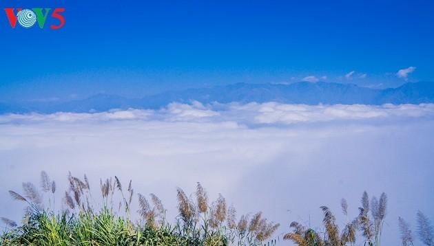 Noroeste de Vietnam entre las nubes: un paraíso terrenal - ảnh 17
