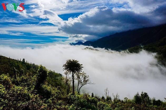 Noroeste de Vietnam entre las nubes: un paraíso terrenal - ảnh 2