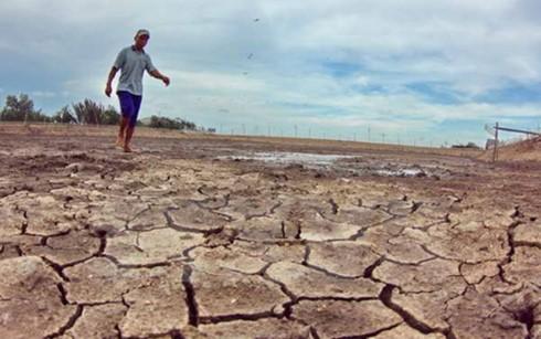 Vietnam junto con parlamentarios mundiales contra cambio climático - ảnh 1