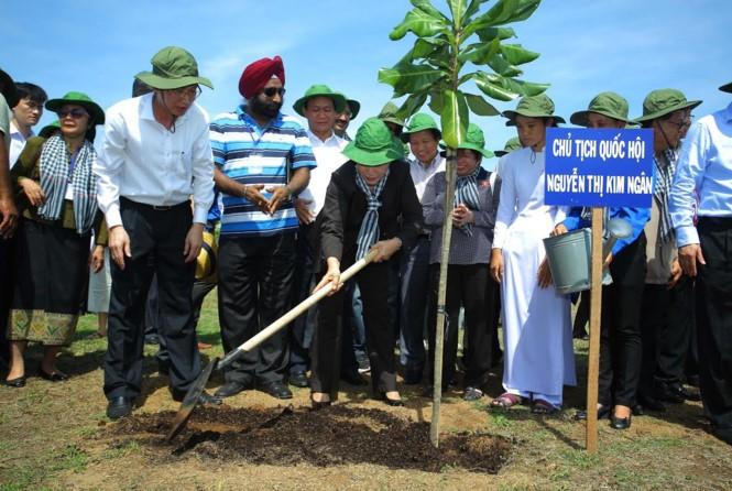 Vietnam y la UIP plantan árboles como acción contra alteración del clima - ảnh 1