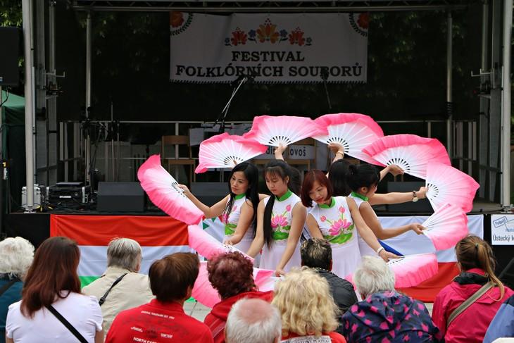 Cultura vietnamita destacada entre las culturas folclóricas en República Checa - ảnh 1