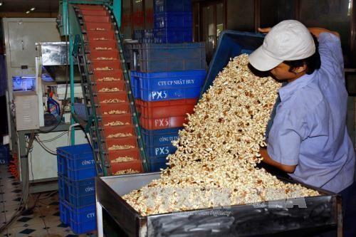 Exportaciones vietnamitas obtienen resultados alentadores - ảnh 1