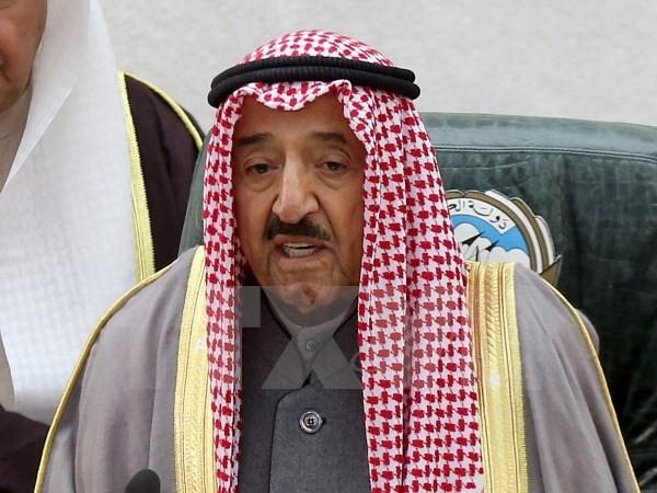 Kuwait esforzado por reducir tensiones en el Golfo Pérsico - ảnh 1