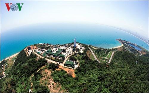 Vietnam promueve el desarrollo sostenible de los bosques - ảnh 1