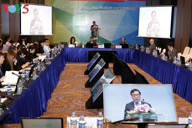 APEC prioriza el desarrollo de las pequeñas y medianas empresas - ảnh 1