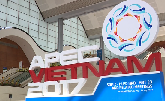 APEC 2017 eleva la posición de Vietnam en la palestra internacional - ảnh 1