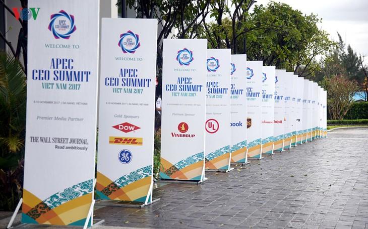 Cumbre empresarial del APEC finaliza logrando resultados definitivos  - ảnh 1