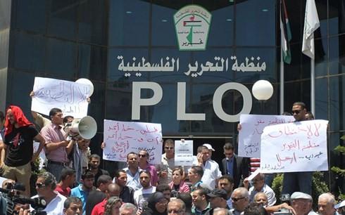 Palestina amenaza con cortar sus vínculos con Estados Unidos - ảnh 1