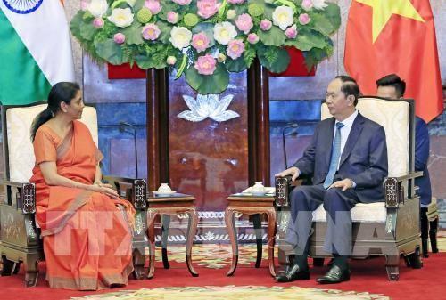 Presidente vietnamita insiste en fortalecer cooperación con la India en defensa - ảnh 1