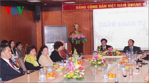 Activities underway to welcome overseas Vietnamese back for Tet - ảnh 1